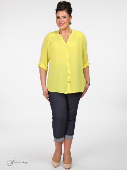 Женская одежда больших размеров - блузка - 260419705